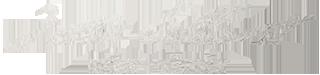 logo-ZettaElliott-silver_04sm1